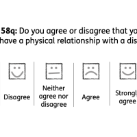 A question which reads: 'Question 58q: Do you agree or disagree that you would be happy to hand a physical relationship with a disabled person?' The answers are: 'Strongly disagree, disagree, neither agree nor disagree, agree, strongly agree, I don't know'.