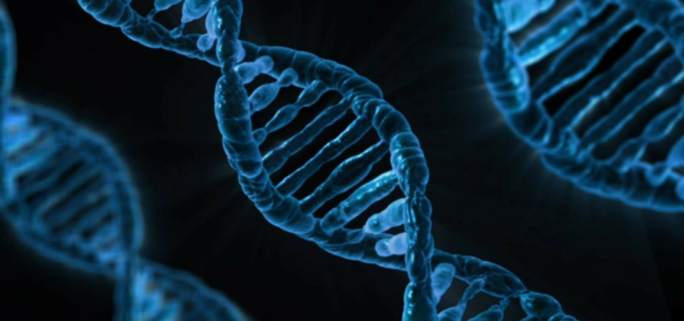 Three blue double-helix DNA molecules against a black background.